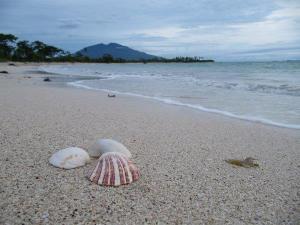 Pantai Merak Belatung