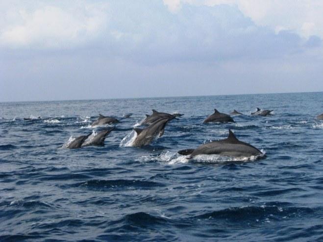 Teluk Kilian