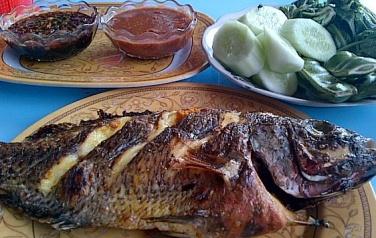 kuliner ikan danau ranau