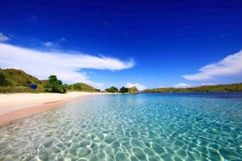 Pantai-Pink-Pulau-Komodo-Flores
