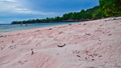pantai pink lombok nusa tenggara barat