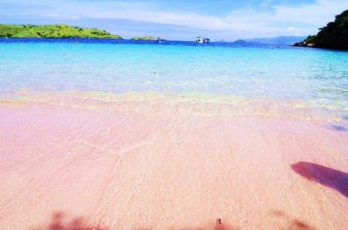 Pantai Tangsi Pantai Berpasir Pink di Lombok Nusa Tenggara Barat