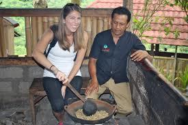 Seorang Turis sedang menyangrai biji kopi luwak