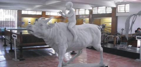 museum-subak