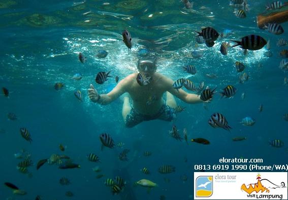 paket wisata indonesia eloratour