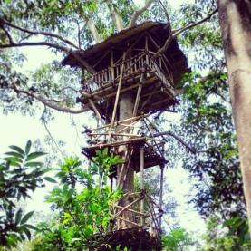 Rumah Pohon Taman Kupu Gita Persada