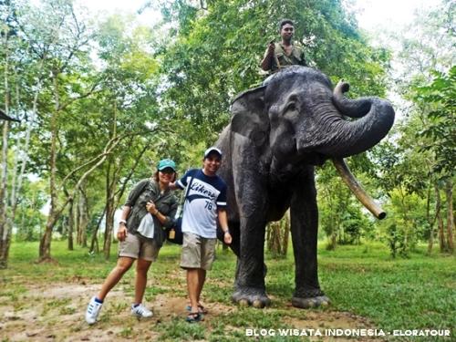 way kambas - tempat wisata di lampung - blog wisata indonesia