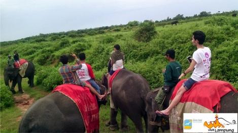 Way Kambas - Tour Gajah 1
