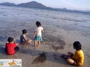 Main Pasir dan Cari Umang-umang di Pantai Klara