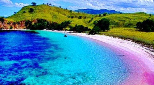 pantai pink tempat wisata di nusatenggara indonesia