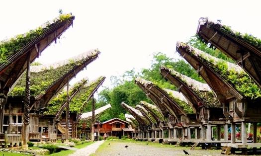tana-toraja-sulawesi-selatan-blog-wisata-indonesia