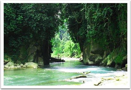 Tempat Wisata Menawan Sumatera Utara Tangkahan
