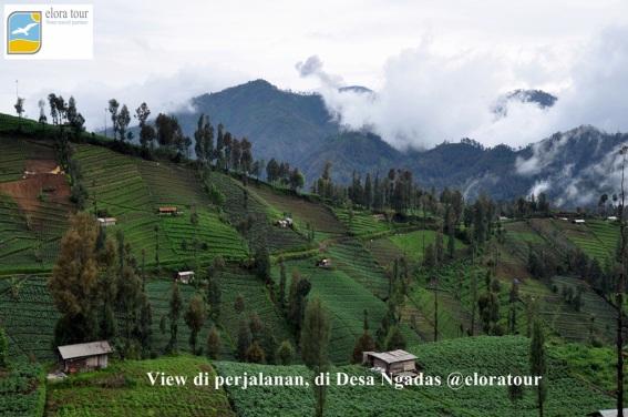 View di perjalanan. Desa Ngadas