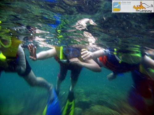 Foto Snorkeling di Spot Pulau Kelagian