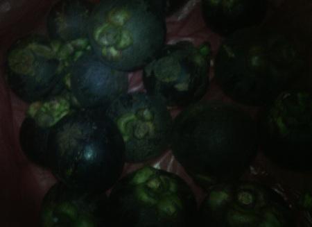 Manggis Lampung