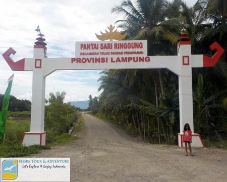 Pantai Sari Ringgung - Gerbang