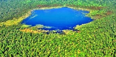 Taman Nasional Tesso Nillo di Provinsi Riau