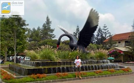 eloratour di Maskot Taman Bunga Nusantara