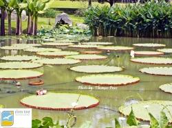 Taman Air Taman Bunga Nusantara eloratour