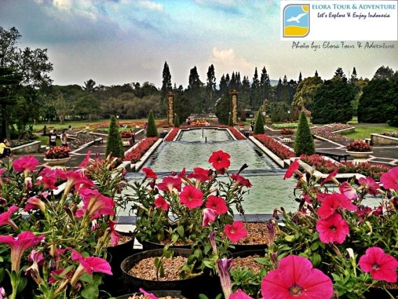 Taman Bunga Nusantara yang Indah Menawan