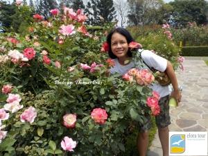 Taman Mawar Elora Tour
