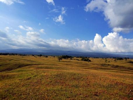 Sabanna Doro Ncanga Sumbawa nusa tenggara barat