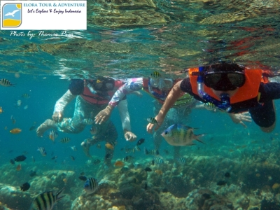 Wisata Keluarga Happy Snorkeling di Kelagian Lunik ELORA TOUR & ADVENTURE