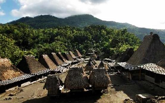 Desa Bena, Bajawa, tempat wisata di nusa tenggara timur