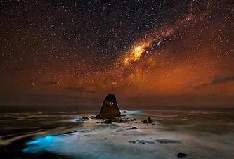 Taburan Bintang di Langit Tanjung Papuma eloratour