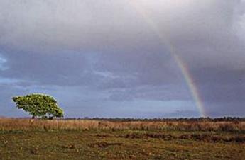 taman-nasional-wasur-papua-eloratour