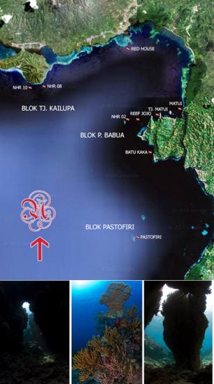 Spot diving di Halmahera Barat Maluku Utara
