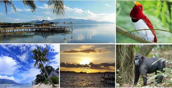 Tempat Wisata di Halmahera Selatan Provinsi Maluku Utara