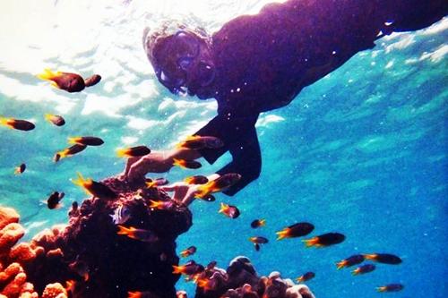 snorkeling menikmati keindahan bawah laut pantai tureloto nias utara