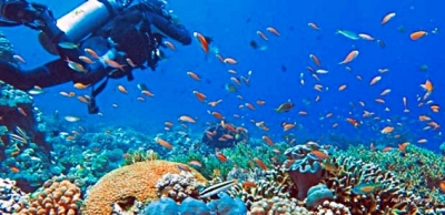 taman-nasional-taka-bonerate-blog-wisata-indonesia