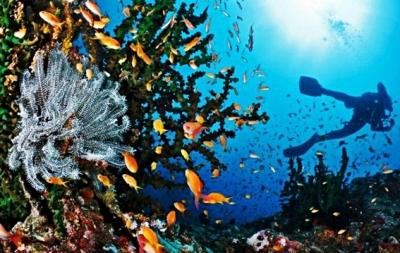 pulau-rubiah-aceh-blog-wisata-indonesia