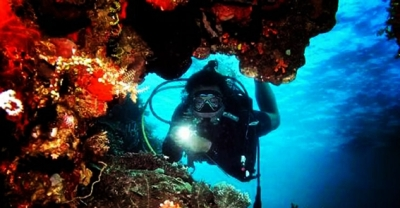 taman-laut-olele-blog-wisata-indonesia