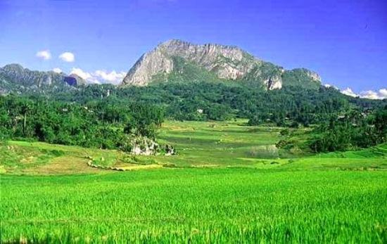 lembah-bada-taman-nasional-torelindu-kabupaten-poso-sulawesi-tengah